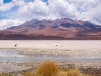 Laguna entre o Uyuni e o Atacama