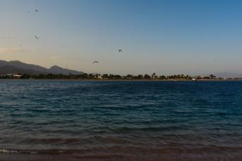 Lagoona Beach - Dahab