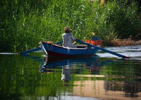 Fisherman - Nile
